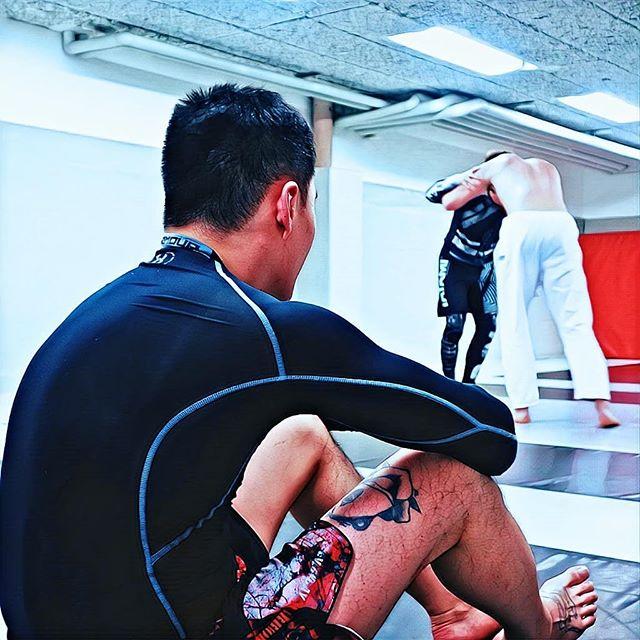 #bjj #jiujitsu #brottning #grappling #wrestling #mma #sweden #stockholm #straightblastgym #sbjjc